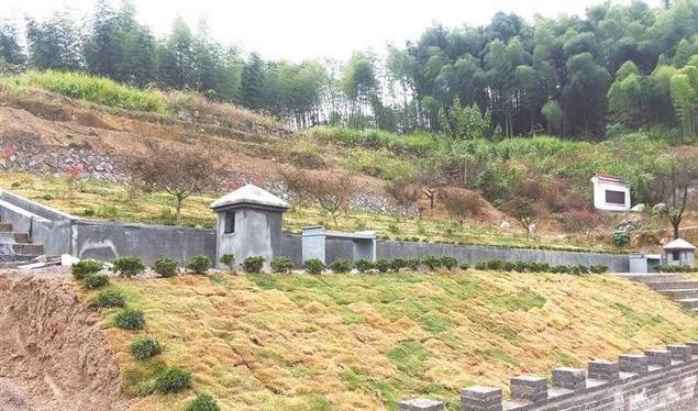 生态安葬利国利民